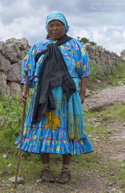 Raramuri woman shepherding her cattle near church of San Ignacio de Arareko