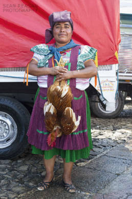 Woman selling a rooster at the San Cristóbal de las Casas market, Chiapas Mexico